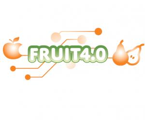 Fruit40